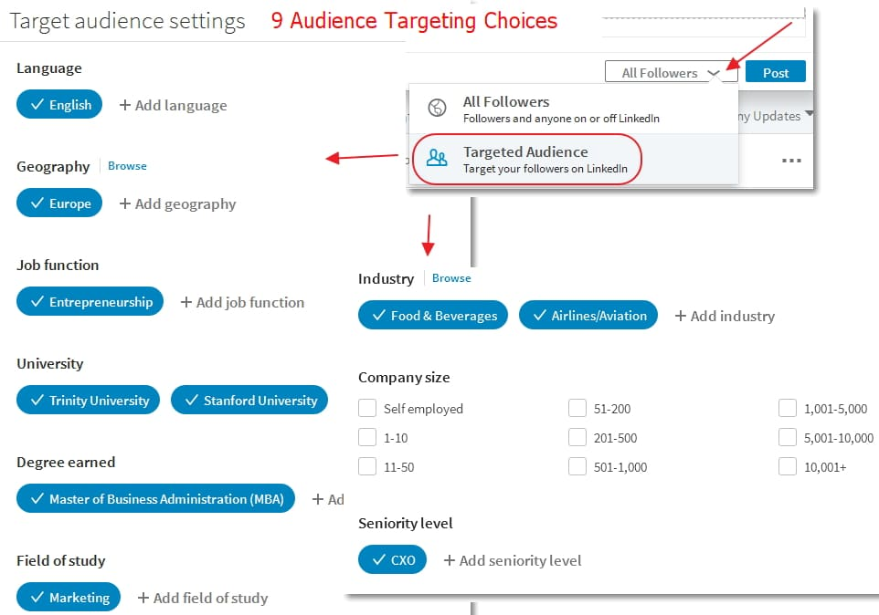 LinkedIn Company Page Post Audience Targeting Options